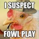 I suspect foul play