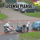 License please