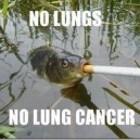 No Lungs