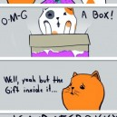 When cats get presents