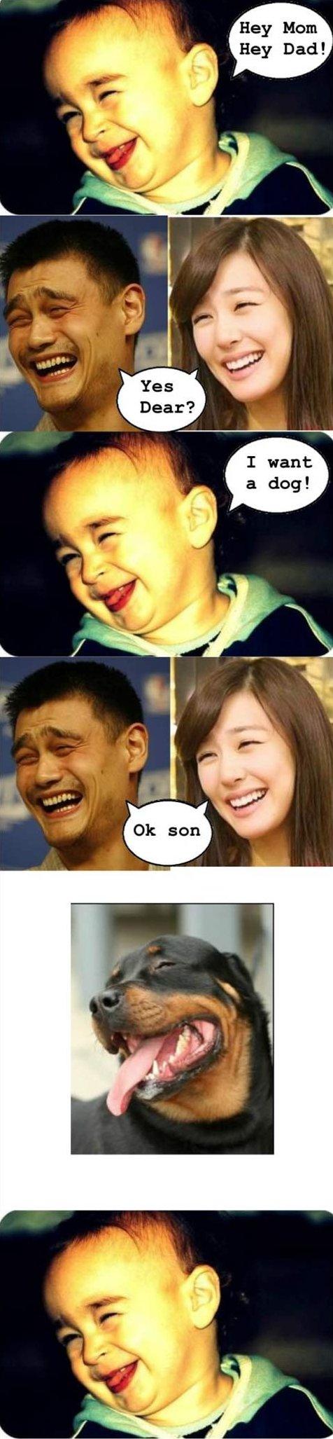 Yao Ming MEME