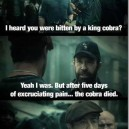 You dont mess with Chuck Norris