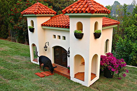 Backyard Dog Mansion