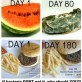 Burgers after 180 days