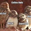 Coffee wls