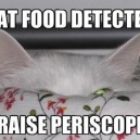 Food Detected
