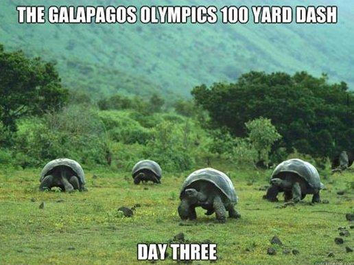 Galapagos Olympics