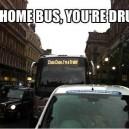 Go home bus