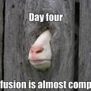 Goat Fusion