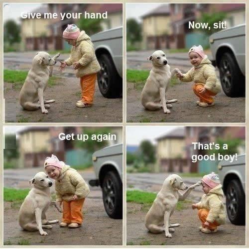 Good human good human