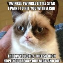 Grumpy cat poem