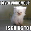 How I feel in the morning