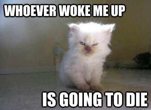 How I feel in the morning