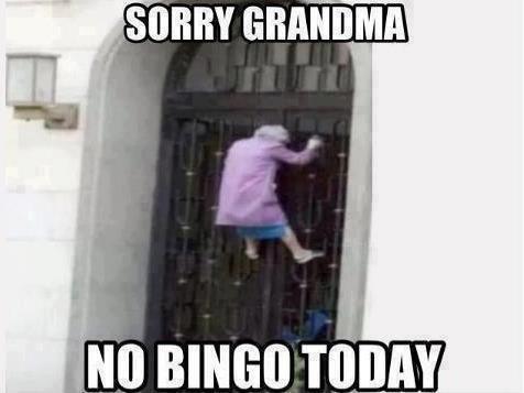 No bingo