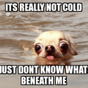 Not cold!