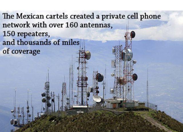 Random Facts, Mexican Cartels