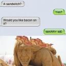 Text Message, Sandwitch