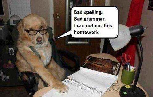 Bad homework