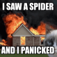 I saw a spider
