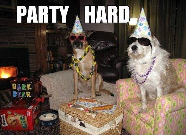 Party-hard.jpg