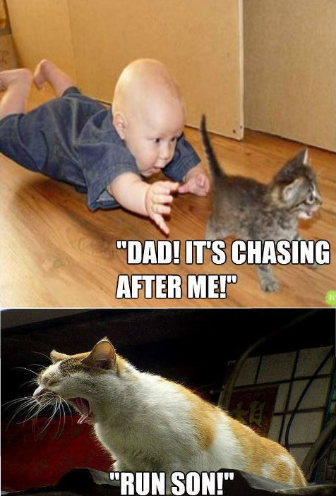 Run Son!