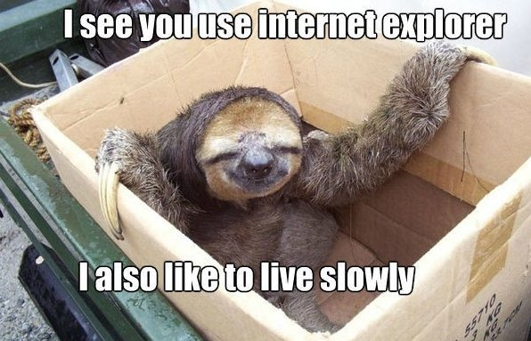 Slow Slow Sloth