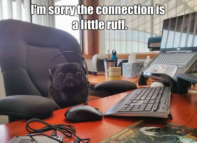 A Ruff Call