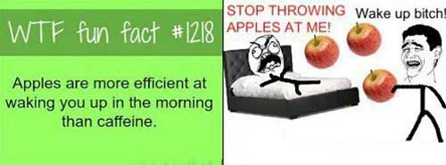 Apples Help You Wake Up