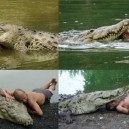 Best Friends With a Crocodile