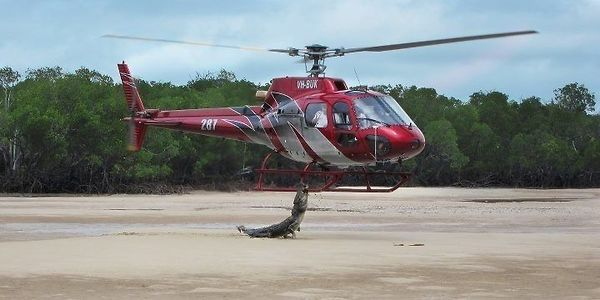 Crocodile vs. Helicopter