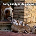 Daddy Has to Go to Work