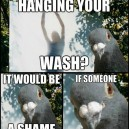 Hanging The Wash