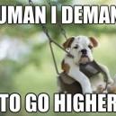 Higher I Say!