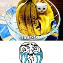 I Iz Banana