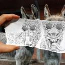 Lifelike Donkey Portrait!
