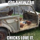 My Car Bringing All The Chicks To The Yard