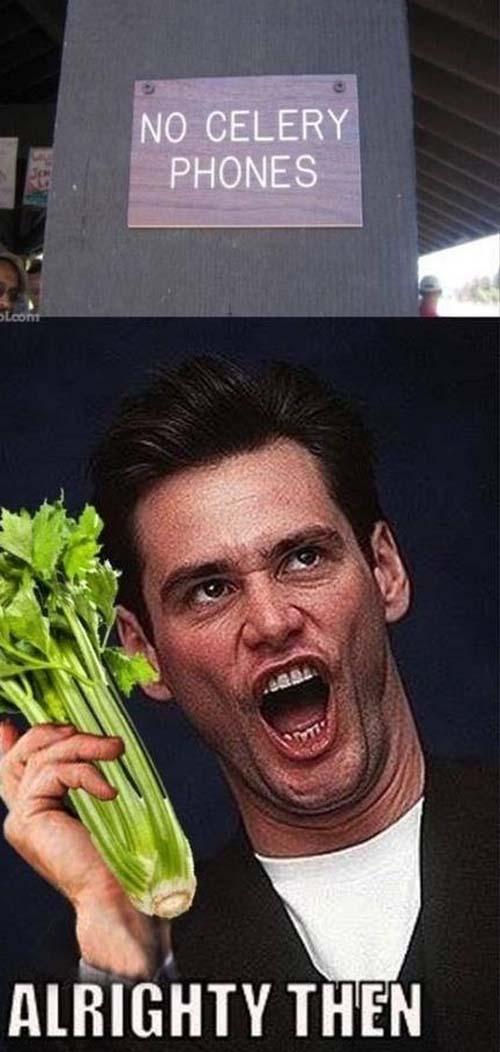 No Celery Phones