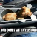 Pup Holder