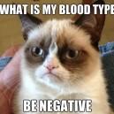 Grumpy Cats Blood Type