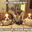 Mocking