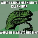 Ninjavs. Ninja