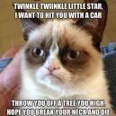 Twinkle Twinkle Grumpy Cat