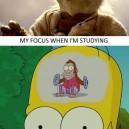 Videogames vs. Studying
