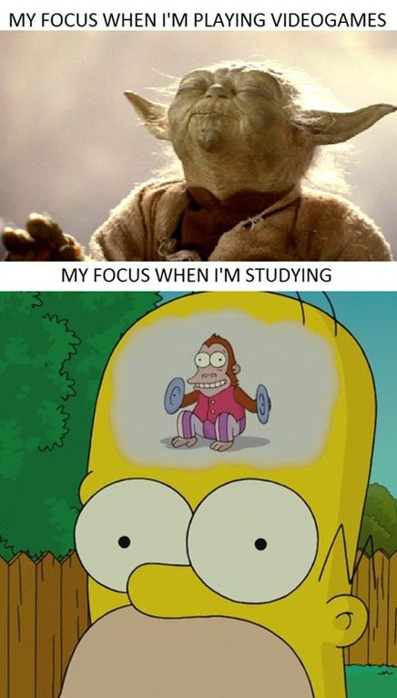 Videogames vs. Studying