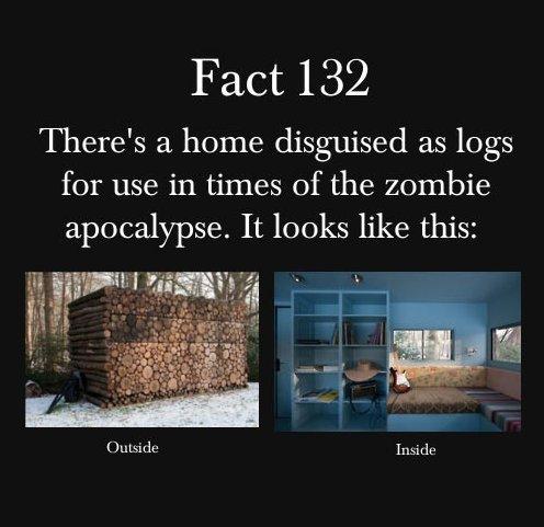 Zombie apocalypse house