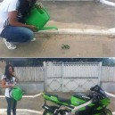Grow Your Own Motorbike