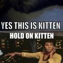 Hello this is kitten
