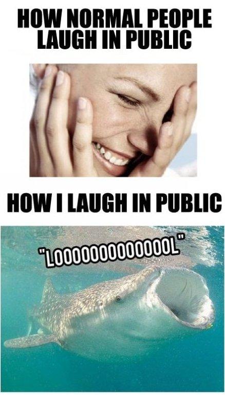 Laugh in Public