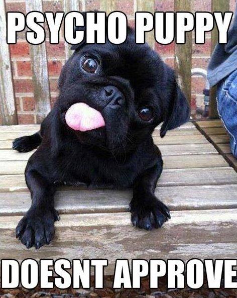 Psycho Puppy