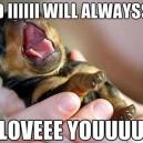 Puppy Yawn